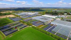Binsted, Walberton, Star Plants nurseries, Farplants Finishing Centre