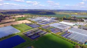 Binsted, Walberton, Toddington, Star Plants nurseries, Farplants Finishing Centre