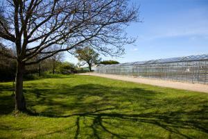 Conservation area Walberton Nursery