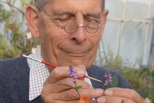 David Tristram plant breeding