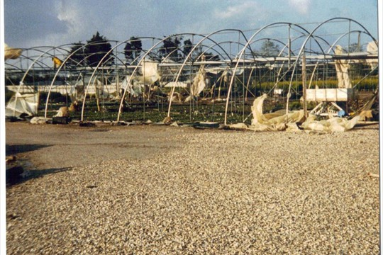 Hurricane Damage, 1987