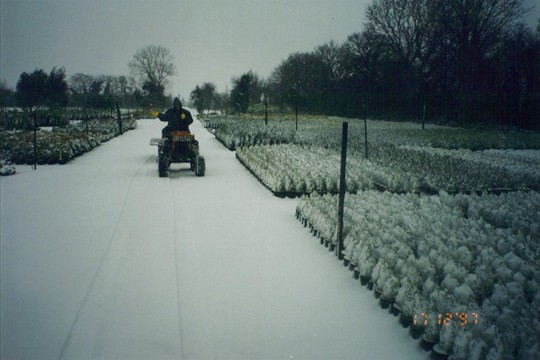Work doesn't stop in the snow of winter, 1997