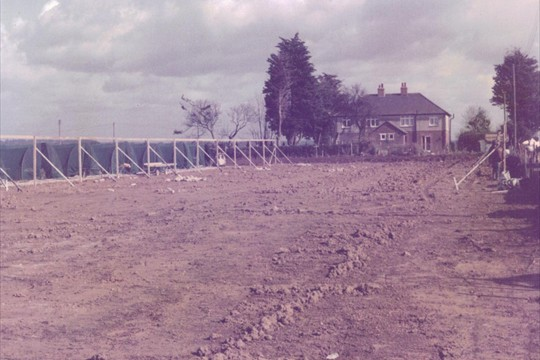 Building the Shade House, 1980
