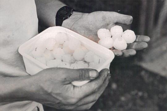 Hailstorm, 1983