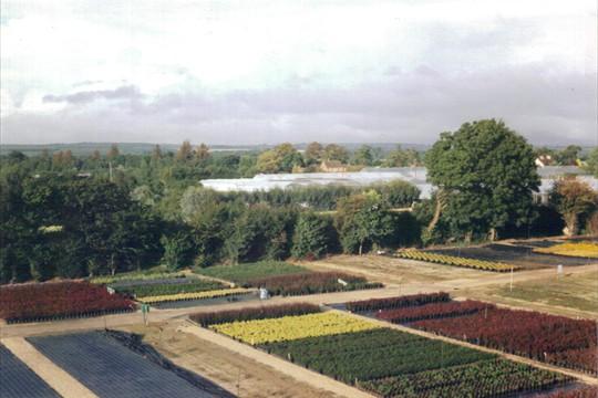 Aerial shot looking North East, 1999