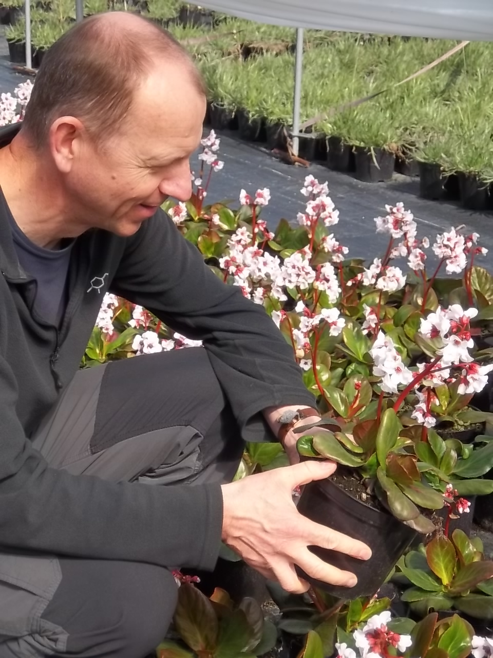 Technical Manager, David Hide, writes for 'The Garden' magazine - Tristram  Plants