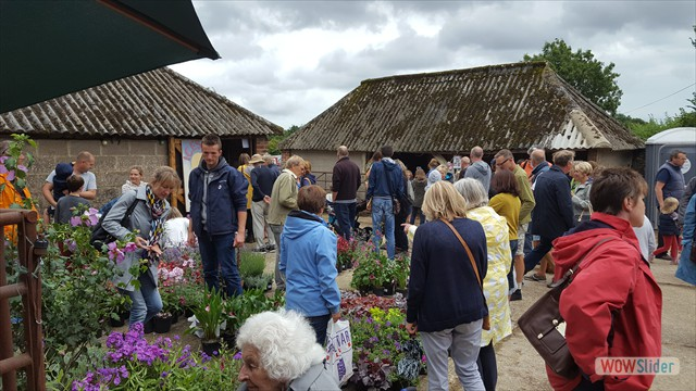 Walberton Nursery contributed to plant sales