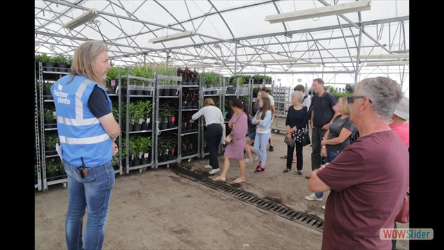 Visitors taking a look at plants ready to send to Garden Centres across the UK