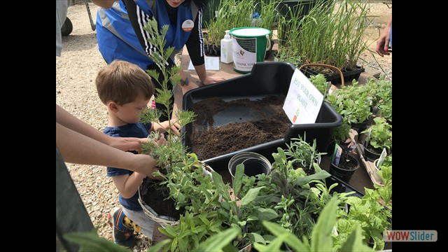 Young green fingers getting stuck in at the 'pot your own' area